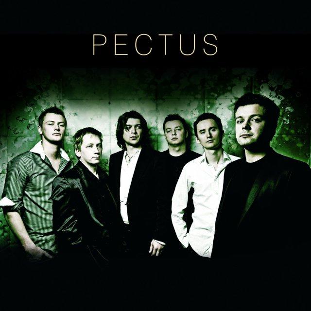 Pectus To Co Chcialbym Ci Dac Tekst Piosenki Tlumaczenie I Teledysk