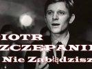 Nie Zabłądzisz - Piotr Szczepanik