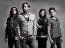 Kings of Leon - Use Somebody( acoustic)