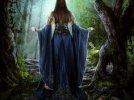 Wilcza zamieć (Pieśń Priscilli) - Wiedźmin