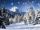 Pada śnieg - Kolęda