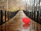 Czas nas uczy pogody - Grażyna Łobaszewska